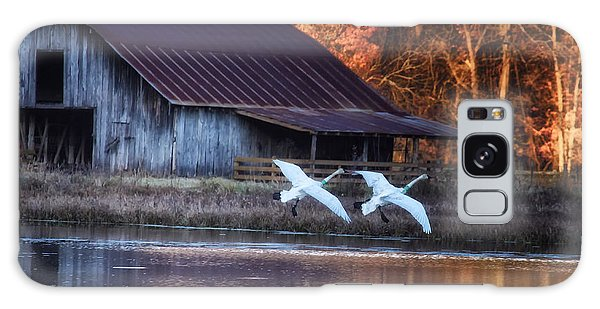 Landing Trumpeter Swans Boxley Mill Pond Galaxy Case by Michael Dougherty
