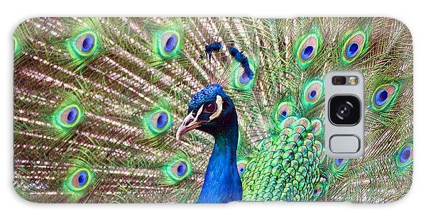 Landscape Peacock Galaxy Case