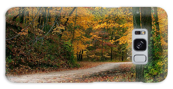 Lane In Fall Galaxy Case