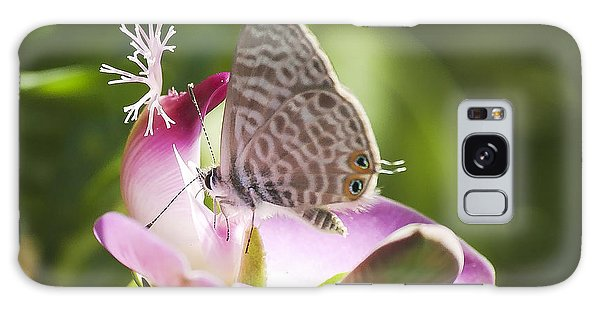 Lang's Short-tailed Blue II Galaxy Case