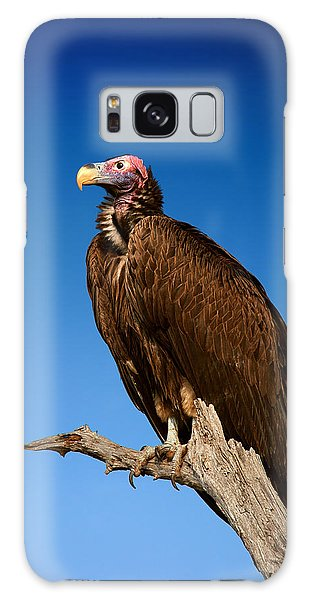 Lappetfaced Vulture Against Blue Sky Galaxy Case