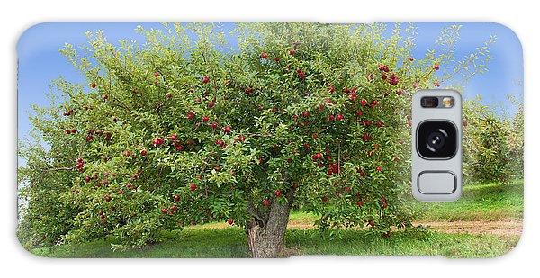 Large Apple Tree Galaxy Case