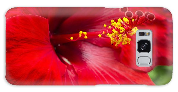 Large Red Hibiscus Galaxy Case
