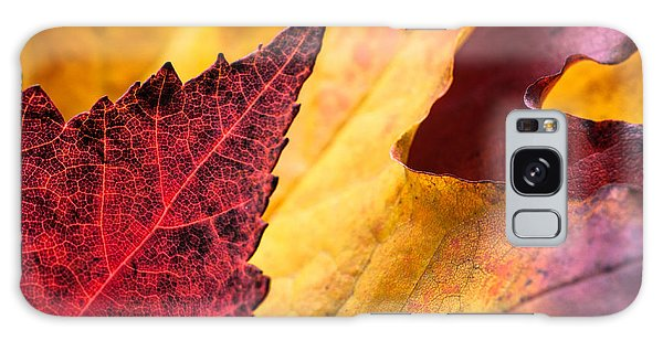 Last Days Of Fall Galaxy Case by Crystal Hoeveler