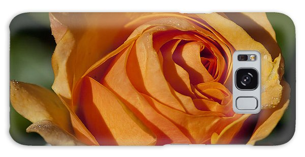 Late Rose Galaxy Case