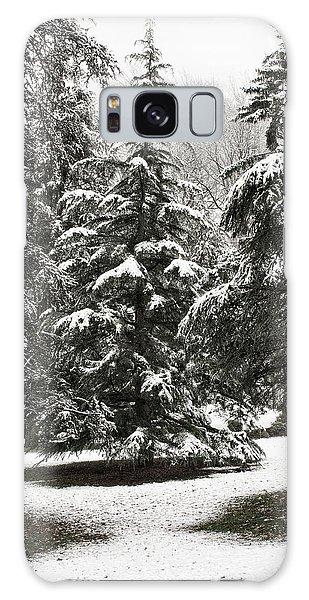 Late Season Snow At The Park Galaxy Case by Gary Slawsky