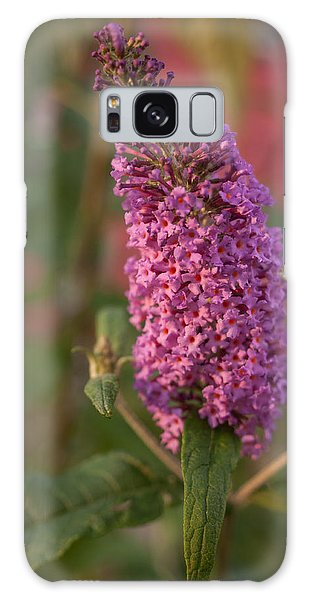 Late Summer Wildflowers Galaxy Case