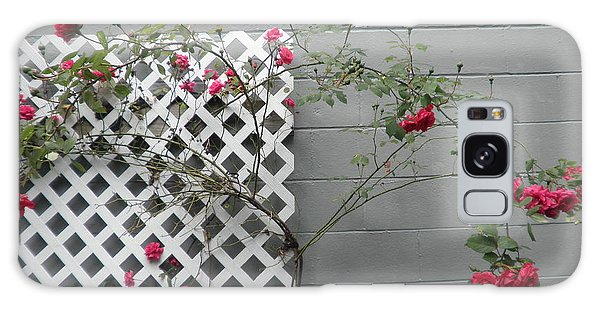 Lattice Smell The Roses Galaxy Case by Suzanne McKay
