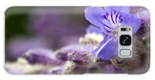 Lavender Beauty Galaxy Case