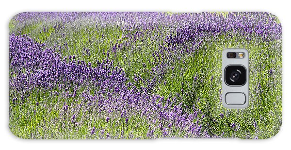 Lavender Day Galaxy Case
