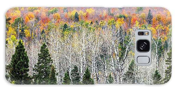 Layers Of Autumn Galaxy Case by Mary Amerman