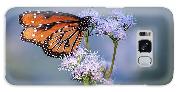 8x10 Metal - Queen Butterfly Galaxy Case