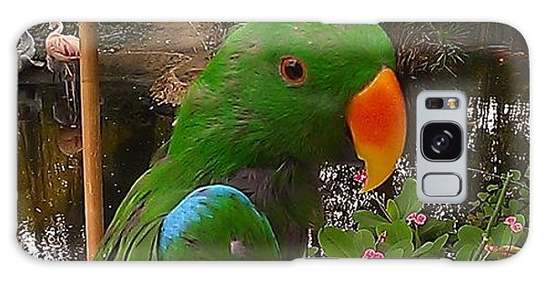 Le Parrot Galaxy Case by Chris Tarpening