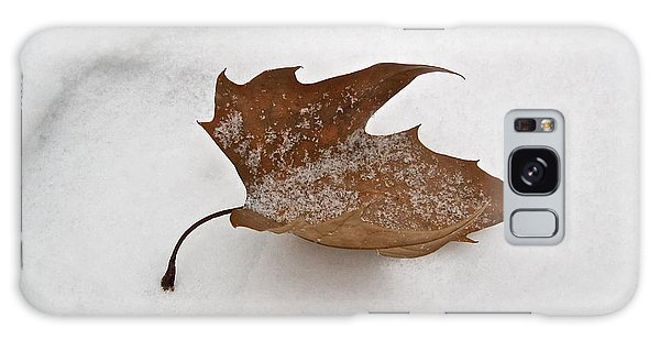 Leaf After The Snowstorm Galaxy Case