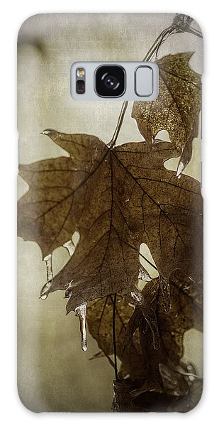 Leaf And Ice With Texture Galaxy Case by Wayne Meyer