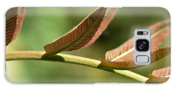 Leaf Bridge Galaxy Case