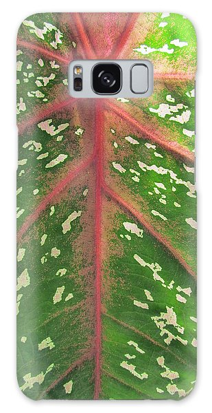 Leaf Design Galaxy Case