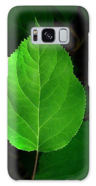 Leaf Glow Galaxy Case