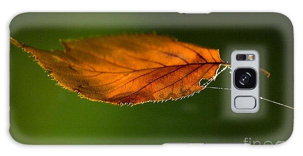 Green Leaf Galaxy Case - Leaf On Spiderwebstring by Iris Richardson