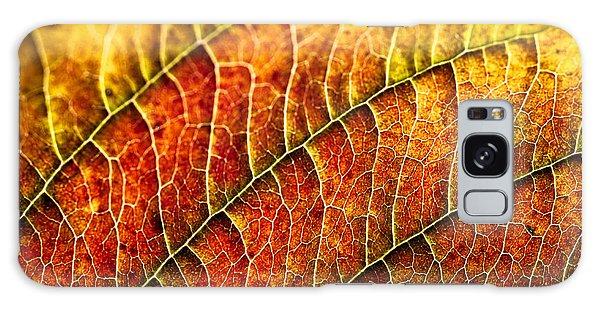 Leaf Rainbow Galaxy Case by Crystal Hoeveler