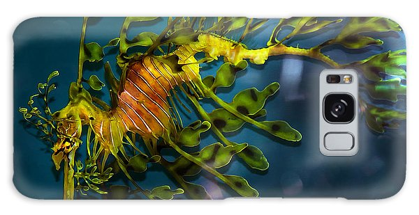 Leafy Sea Dragon Galaxy Case by Artist and Photographer Laura Wrede