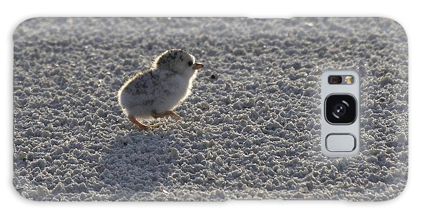 Least Tern Chick Galaxy Case by Meg Rousher