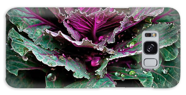 Decorative Cabbage After Rain Photograph Galaxy Case