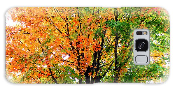 Leaves Changing Colors Galaxy Case