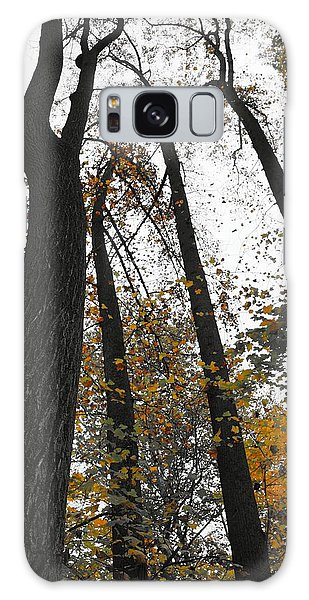 Leaves Lost Galaxy Case by Photographic Arts And Design Studio