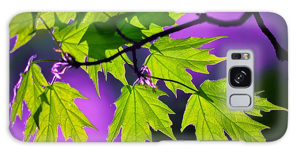 Leaves Of Eve Galaxy Case by Brian Stevens