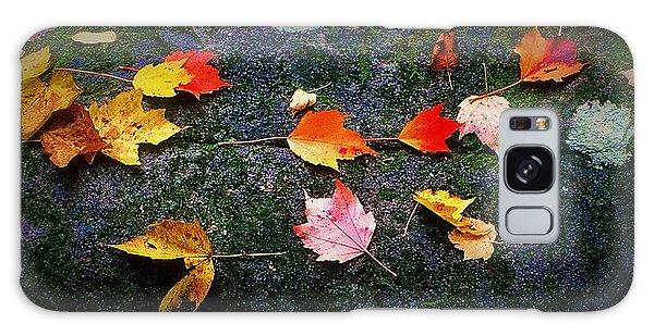 Leaves On Rock  Galaxy Case