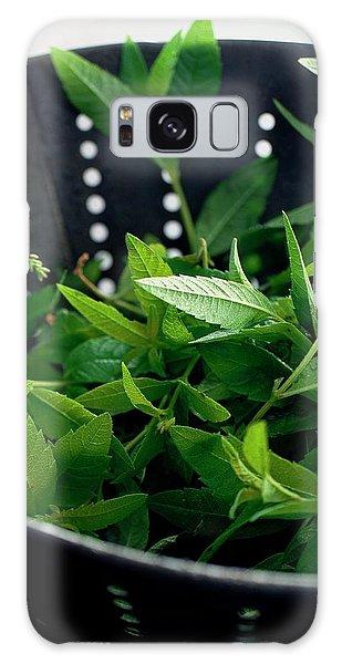Lemon Verbena Herbs Galaxy Case