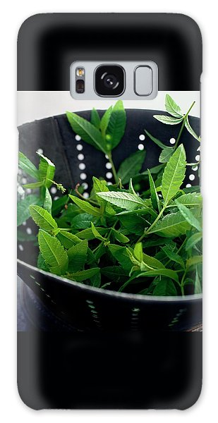 Lemon Verbena Herbs Galaxy Case