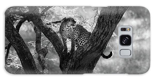 Africa Galaxy Case - Leopard by Bjorn Persson