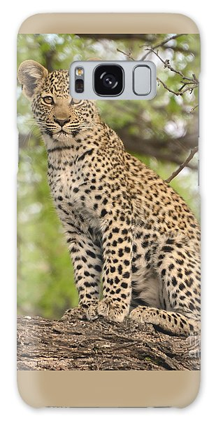 Leopard Cub Gaze Galaxy Case