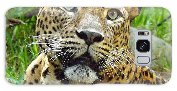 Leopard Face Galaxy Case