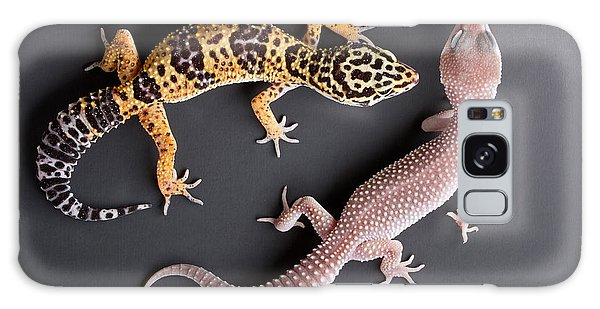 Leopard Gecko E. Macularius Collection Galaxy Case