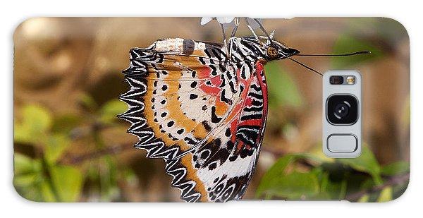 Leopard Lacewing Butterfly Dthu619 Galaxy Case by Gerry Gantt
