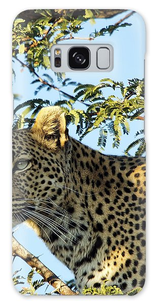 Leopard Photography Galaxy Case