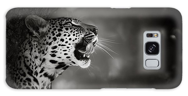 Tree Galaxy Case - Leopard Portrait by Johan Swanepoel