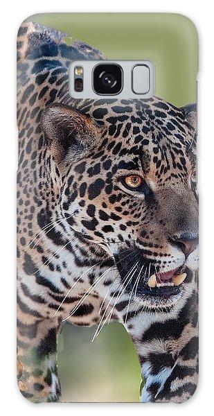 Jaguar Walking Portrait Galaxy Case