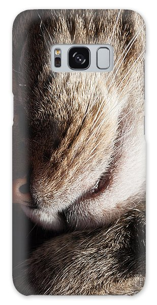 Let Sleeping Cats Lie Galaxy Case