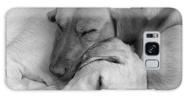 Let Sleeping Dogs Lie Galaxy Case by Fiona Messenger