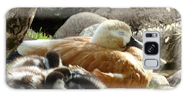 Let Sleeping Ducks Lie Galaxy Case