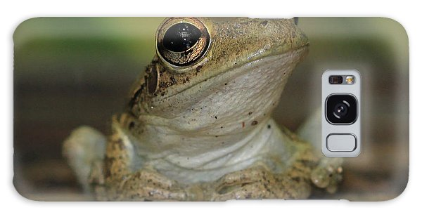 Let's Talk - Cuban Treefrog Galaxy Case by Meg Rousher