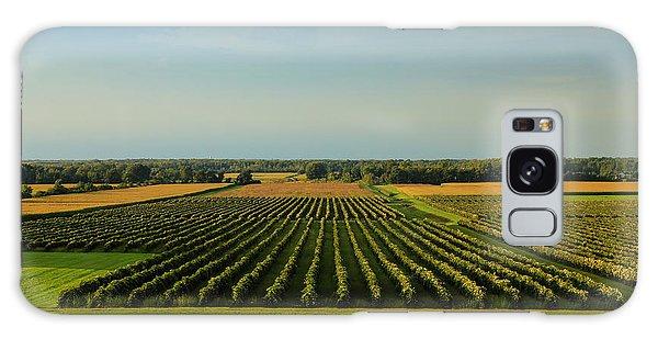 Lewiston Summer Vineyards Galaxy Case