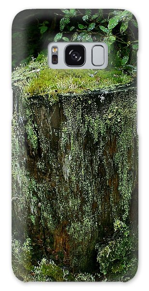 Lichen And Moss Covered Stump Galaxy Case by Amanda Holmes Tzafrir