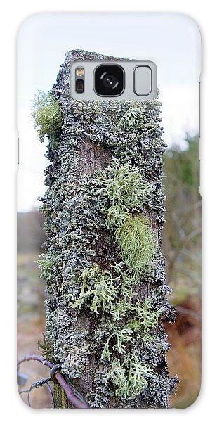 Fence Post Galaxy Case - Lichens by Gustoimages/science Photo Library
