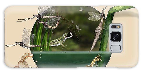 Life Cycle Of Mayfly Ephemera Danica - Mouche De Mai - Zyklus Eintagsfliege - Stock Illustration - Stock Image Galaxy Case