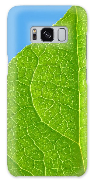 Life Of A Leaf Galaxy Case by Joan Herwig